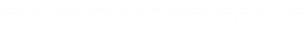 Enzweiler logo